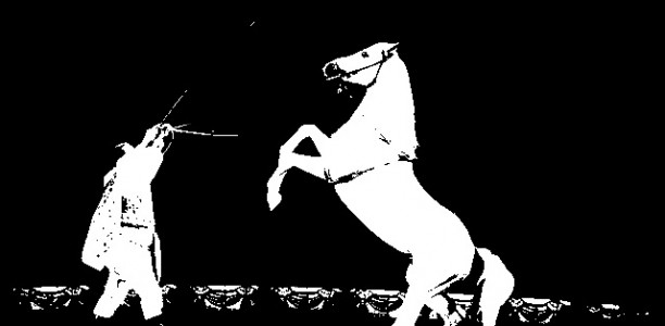Izvlečki iz poglavja »Konjeniški šport« – Nekaj besed o cirkusu