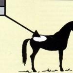 Mrzel zrak, ki stalno piha na omejen del konjevega telesa je v toplem hlevu škodljiv.