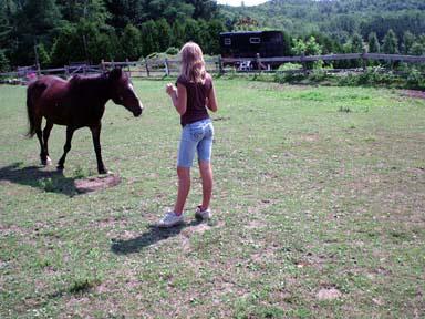 Konj, ki je brcal in bežal od ljudi, je našel nekoga, ki posluša.