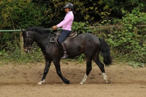 Riding-course-no-stirrups1