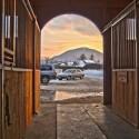 Vhlevitev konj na Gorenjskem (Idilična lokacija, ugodna cena...)
